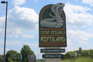Clyde Peeling Sign