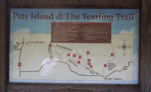 The Yearling Trail