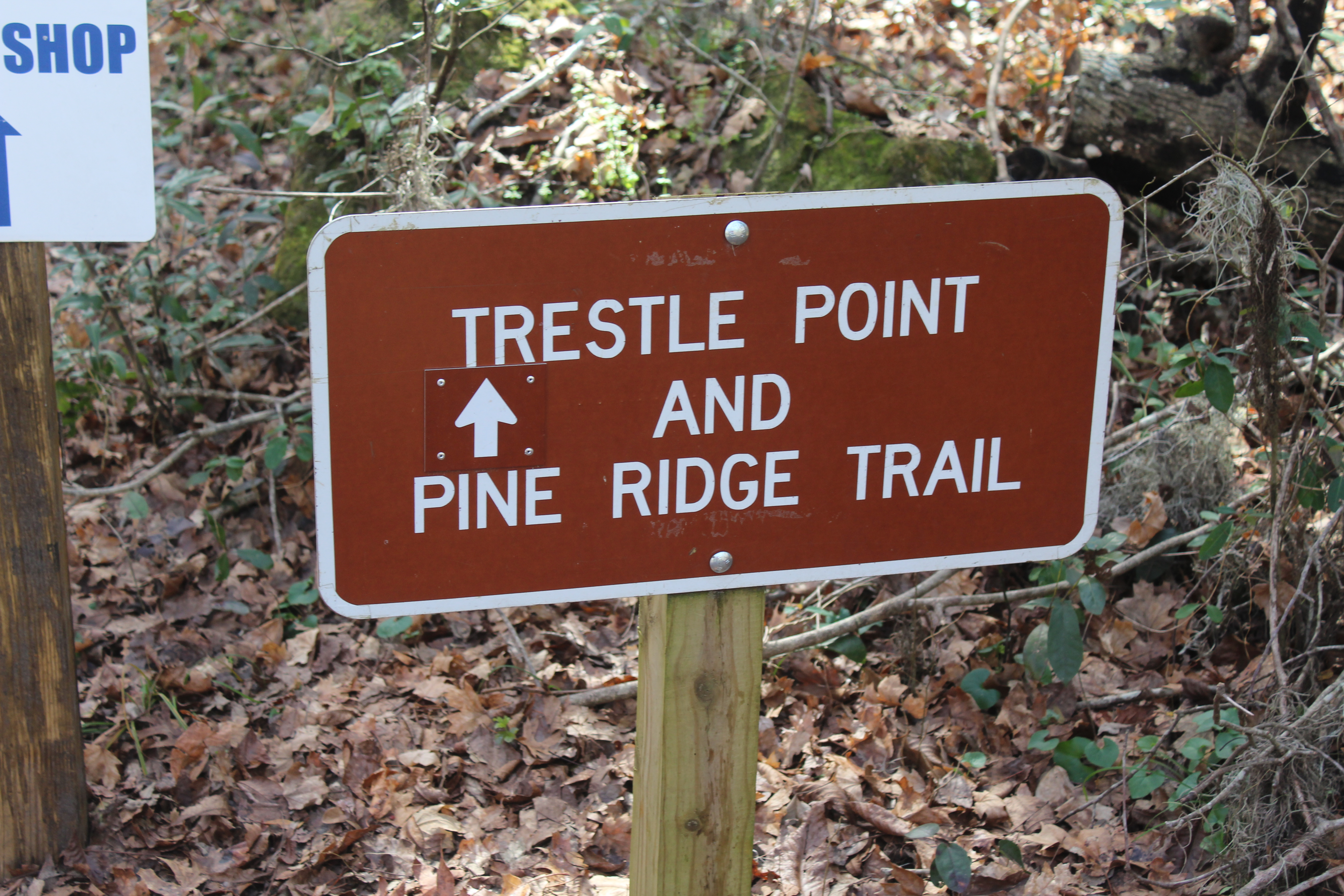 Trestle Point and Pine Ridge Trail