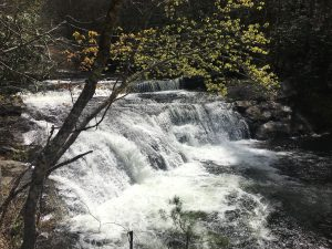 View Of Bald River Falls From The Top